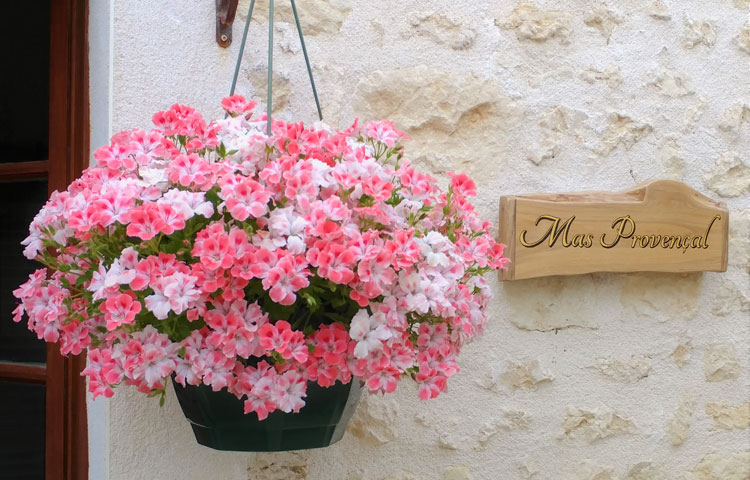 Exterior - courtyard setting of toddler friendly cottage in Charente, South west France
