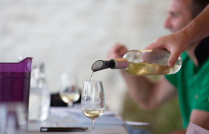 Family friendly holiday accommodation France - Wine Tasting